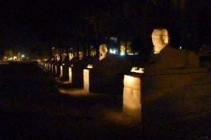Sphinx-at-Luxor